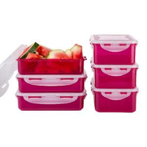 set-6-delig-berries